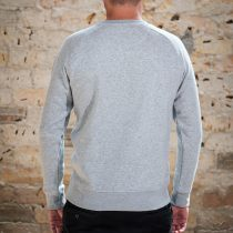 AESTHETIKA Sweatshirt - THE_FOX grey/black back