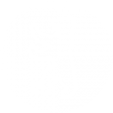 ÄSTHETIKA icon design made in berlin