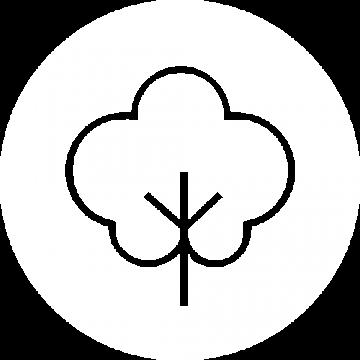ÄSTHETIKA icon organic cotton