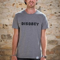 ÄSTHETIKA T-Shirt - DISOBEY grey/black front