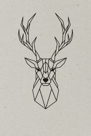 AESTHETIKA_Motive Close up THE_DEER